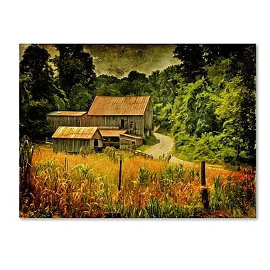 Trademark Fine Art 'Country Road In Summer' 30