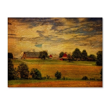 Trademark Fine Art 'Summer Farm' 30