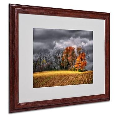 Trademark Fine Art 'Autumn Field' 16