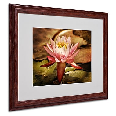 Trademark Fine Art 'Magic Lily' 16