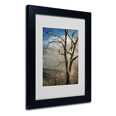 Trademark Fine Art 'Tree In Winter' 11