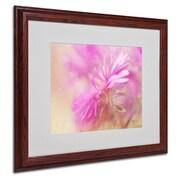 """Trademark Fine Art 'Dewy Pink Aster' 16"""" x 20"""" Wood Frame Art"""