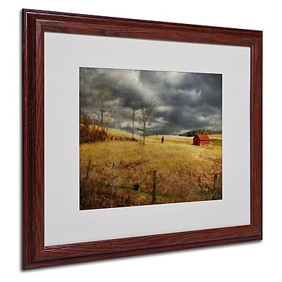 Trademark Fine Art 'Winter Begins' 16