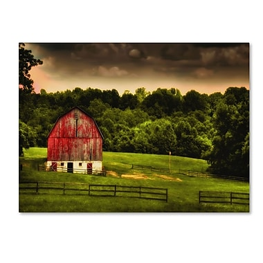 Trademark Fine Art 'Summer Evening On the Farm' 30