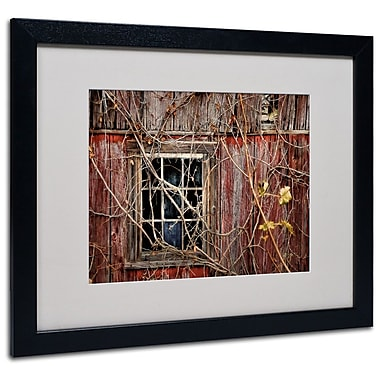 Trademark Fine Art 'Old Barn Window' 16