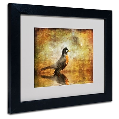Trademark Fine Art 'The Robin' 11