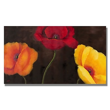 Trademark Fine Art 'Orange Red and Yellow'
