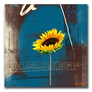 "Trademark Fine Art 'Sunflower' 35"" x 35"" Canvas Art"