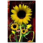 "Trademark Fine Art 'Sunflower I' 30"" x 47"" Canvas Art"
