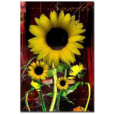Trademark Fine Art 'Sunflower I' 30