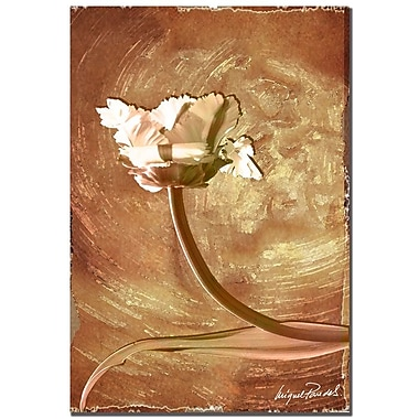 Trademark Fine Art 'Wax Flower I' 22