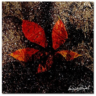 Trademark Fine Art ' Red Leaves III' 18