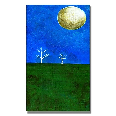 Trademark Fine Art 'Moonlight One' 18
