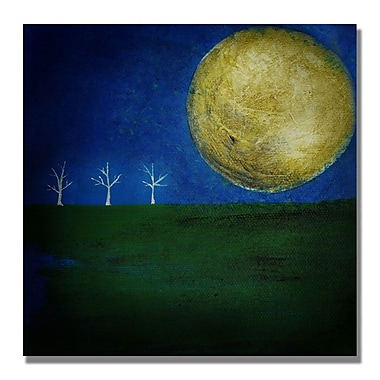 Trademark Fine Art 'Moonlight Minute'
