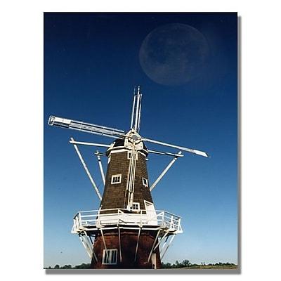 Trademark Fine Art 'Moon Exposed' 30