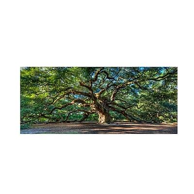 Trademark Fine Art 'Angel Oak Charleston' 12