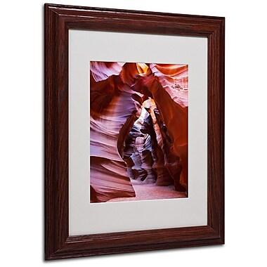 Trademark Fine Art 'Antelope' 11
