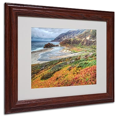 Trademark Fine Art 'Bigsur California' 11