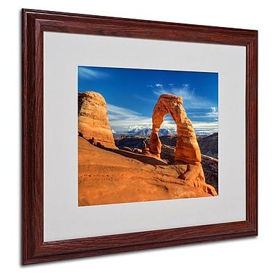 Trademark Fine Art 'Delicate Arch' 16
