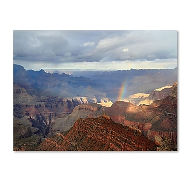 Trademark Fine Art 'Grand Canyon Rainbow' 14