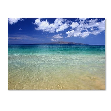 Trademark Fine Art 'Hawaii Blue Beach' 30