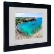 Trademark Fine Art 'Honolua Bay'