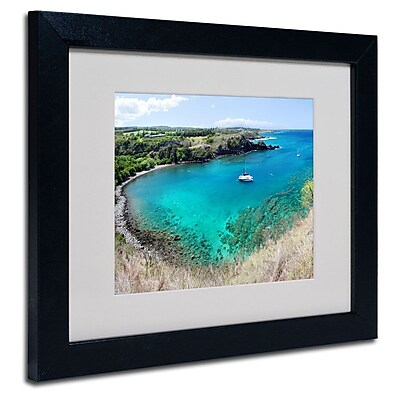 Trademark Fine Art 'Honolua Bay' 11