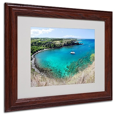 Trademark Fine Art 'Honolua Bay' 11