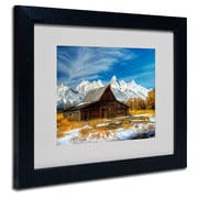 Trademark Fine Art 'Iconic Barn Grand Teton'