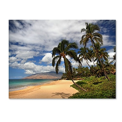 Trademark Fine Art 'Kamaole Tropical' 30