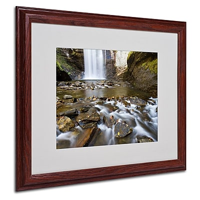 Trademark Fine Art 'Looking Glass Falls' 16