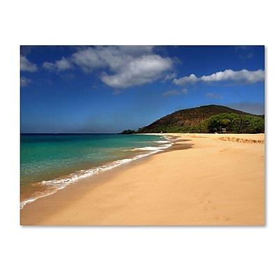 Trademark Fine Art 'Makena Hawaii' 30