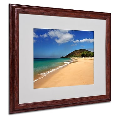 Trademark Fine Art 'Makena Hawaii' 16