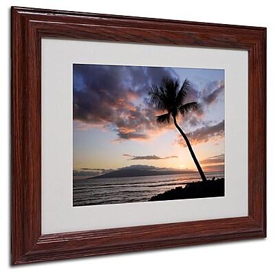 Trademark Fine Art 'Palm Tree Maui' 11