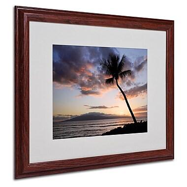 Trademark Fine Art 'Palm Tree Maui' 16