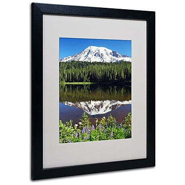 Trademark Fine Art 'Rainier Wildflowers' 16