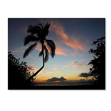Trademark Fine Art 'Tropical Sunset' 22