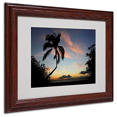 Trademark Fine Art 'Tropical Sunset' 11