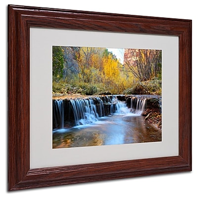 Trademark Fine Art 'Zion Autumn' 11