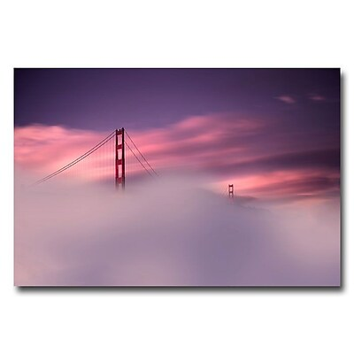 Trademark Fine Art 'San Francisco Fog' 22