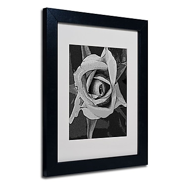 Trademark Fine Art 'Black & White Rose'
