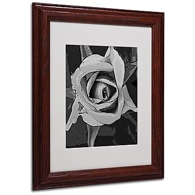 Trademark Fine Art 'Black & White Rose' 11