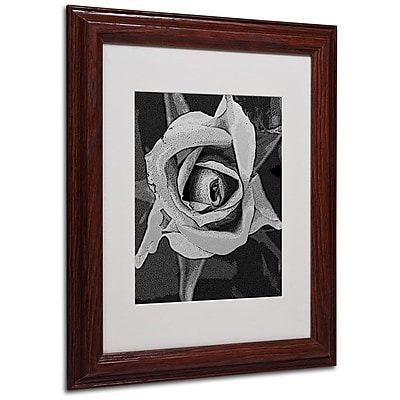 Trademark Fine Art 'Black & White Rose' 11