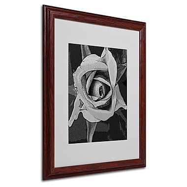 Trademark Fine Art 'Black & White Rose' 16