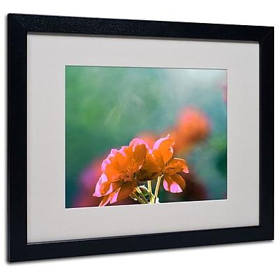 Trademark Fine Art 'Flowers & Sun' 16