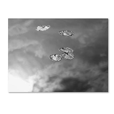 Trademark Fine Art 'Lily Pads & Sky' 22