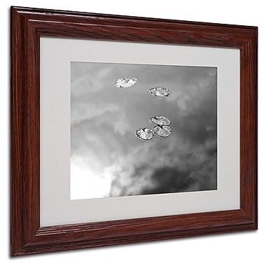 Trademark Fine Art 'Lily Pads & Sky' 11