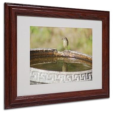 Trademark Fine Art 'Little Bird' 11
