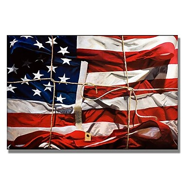 Trademark Fine Art 'American Wrap' 30