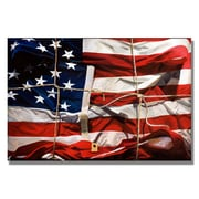 Trademark Fine Art 'American Wrap'